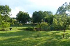 Achterste gedeelte achtertuin